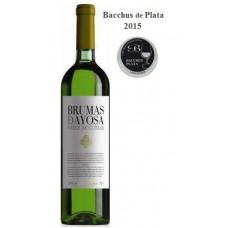 Brumas de Ayosa - Vino Blanco Seco Weißwein trocken 11,5% Vol. 750ml hergestellt auf Teneriffa - LAGERWARE